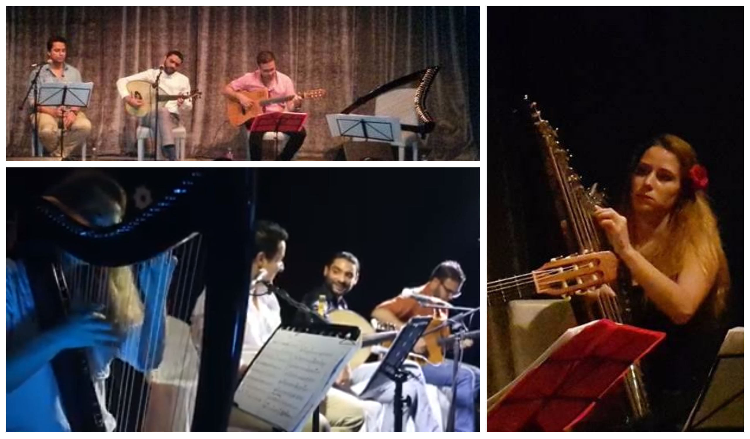 Oud, nay, guitar… and electric harp!