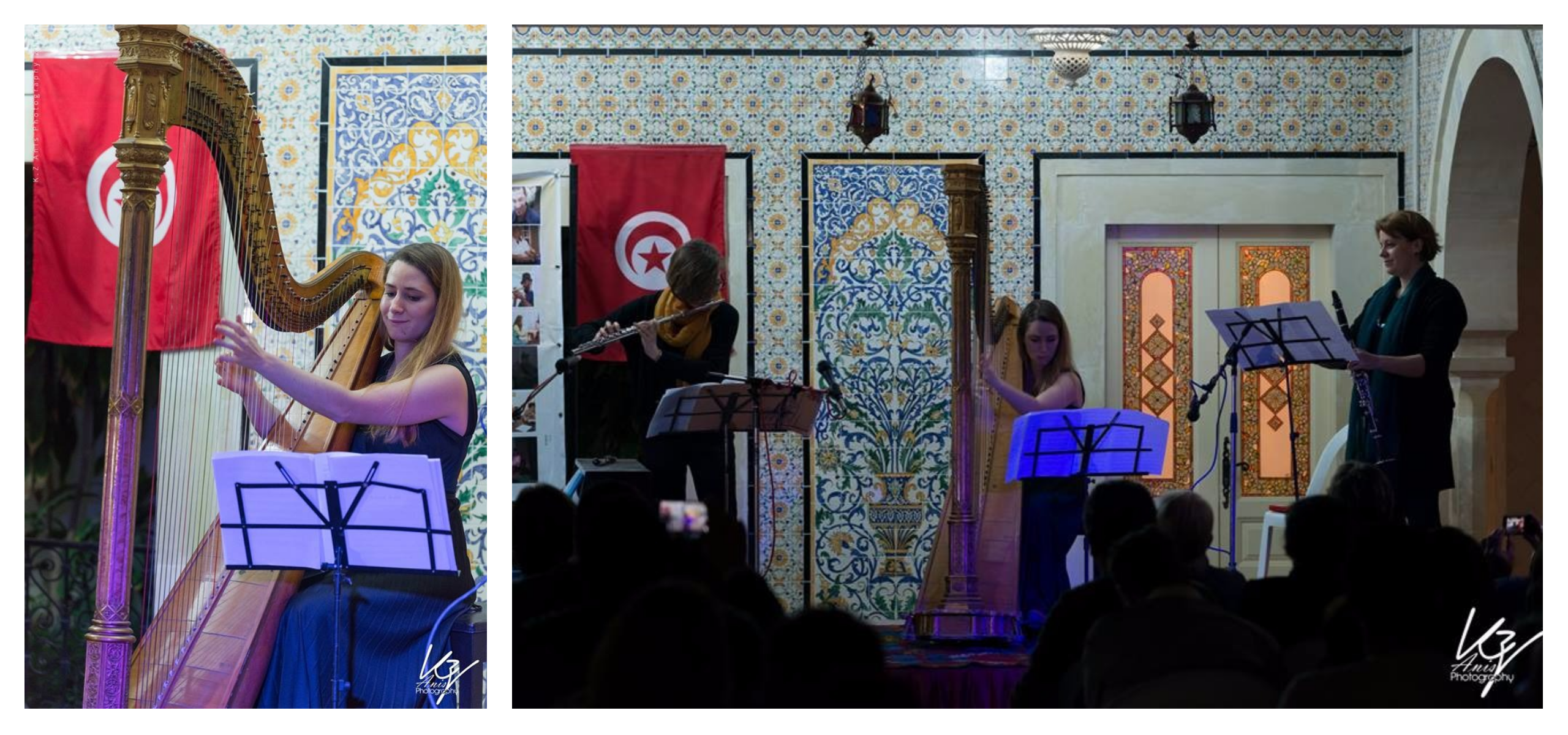 Trio harp, flute and clarinet in Nabeul